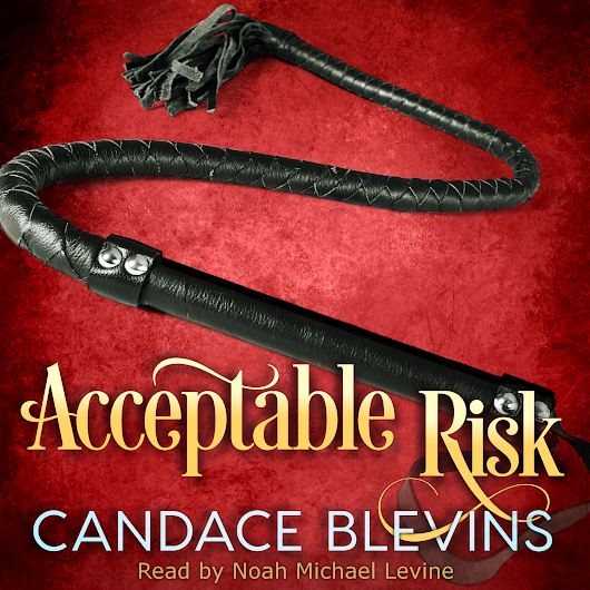 TOUR Audio w/INTERVIEW - Acceptable Risk (Chattanooga Supernaturals, #3) by Candace Blevins Narrator: Noah Michael Levine