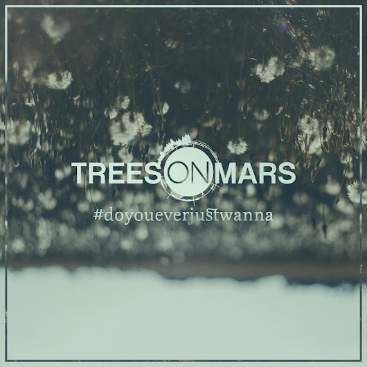 Interview with Hayden Graham (Trees on Mars)