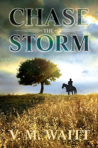 Chase the Storm by V. M Waitt