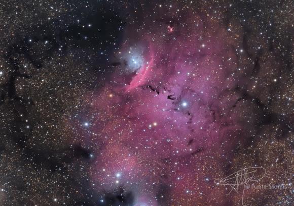 Enterprise Photography: Nebulas &emdash; NGC 6559