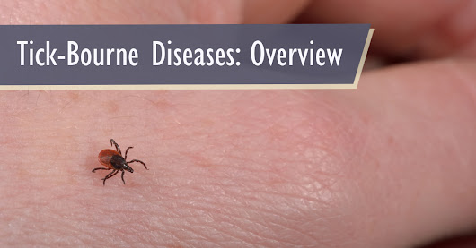 Tick-Bourne Diseases: Overview