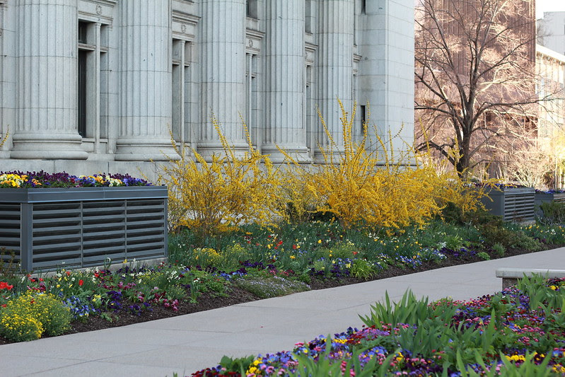 spring at Temple Square by replicate then deviate