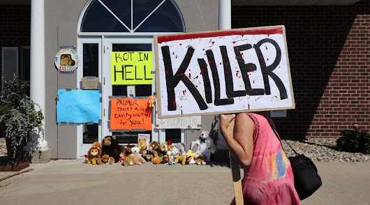 From Gamergate to Cecil the lion: internet mob justice is out of control