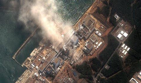 Kết quả hình ảnh cho Đừng đổ lỗi thảm họa Fukushima cho... văn hóa Nhật Bản