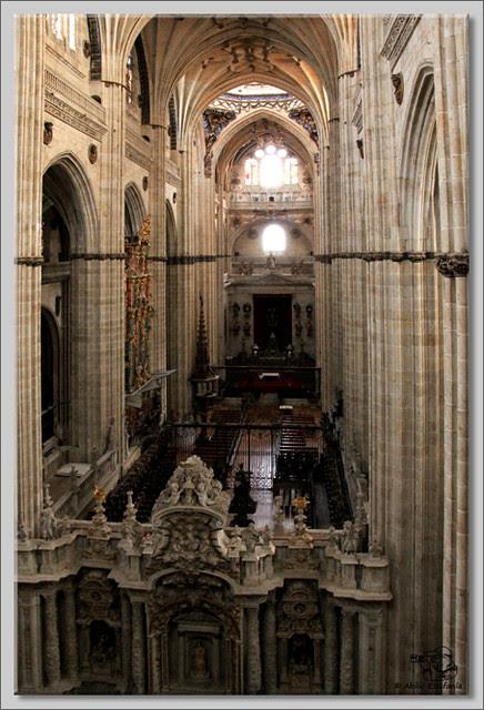 16 Salamanca