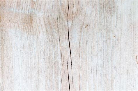 Light wood texture macro photo   Pattern Pictures free