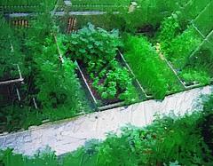 July garden oilpaint