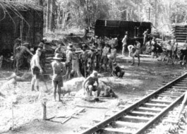 Birma spoor