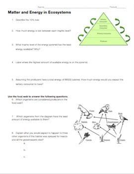 Aquatic Ecosystems Worksheet Answer Key   worksheet