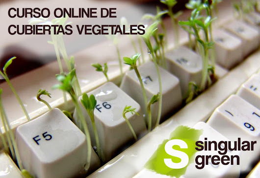 Cursos archivo - SingularGreen