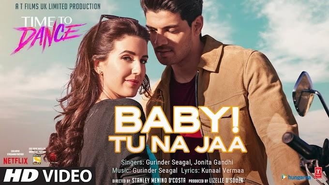 बेबी तू ना जा Baby Tu Na Jaa Hindi Lyrics - Gurinder Seagal, Jonita Gandhi Lyrics