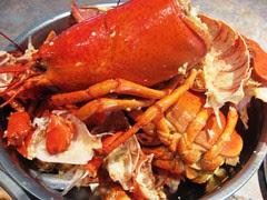 Lobster Shells