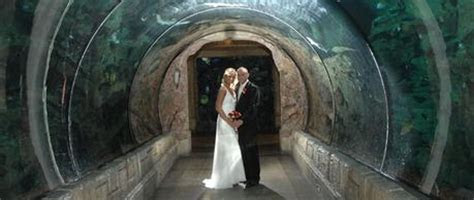 5 Crazy and Amazing Places to Get Married in Las Vegas