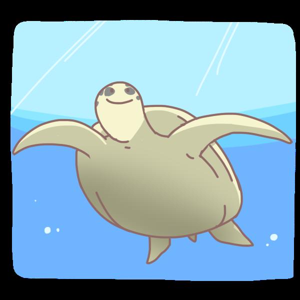 海を泳ぐカメのイラスト かわいいフリー素材が無料のイラストレイン