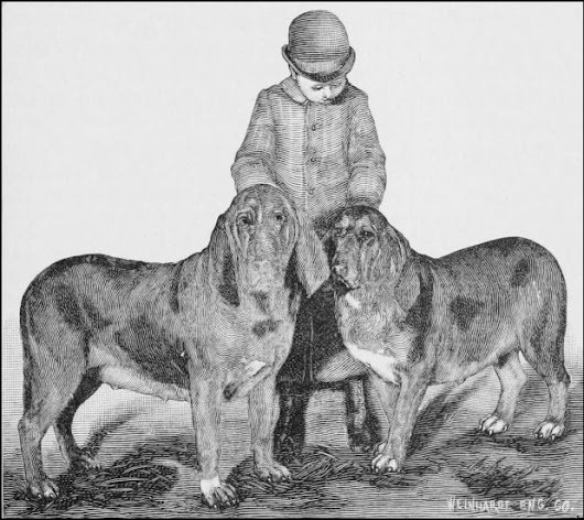 Barnaby & Burgho: The Bloodhounds Hired to Hunt Jack the Ripper