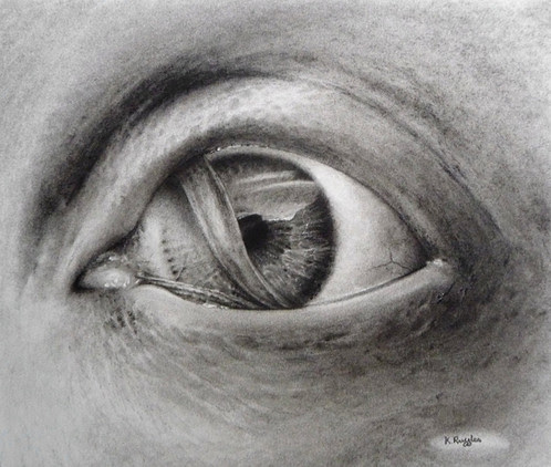 Mermaid eye original charcoal drawing | Charcoal Drawing | North Yorkshire | Drawing In Dark