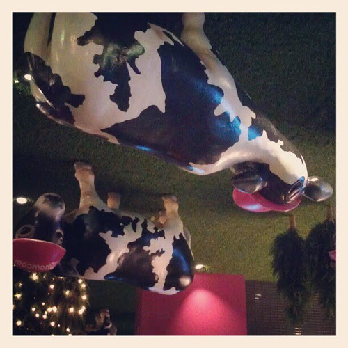 The ceiling at Wow Cow Parramatta.
