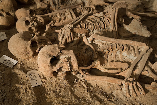 200 skeletons found in medieval mass grave beneath Paris supermarket