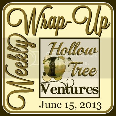 Hollow Tree Ventures weekly wrap-up 20130615