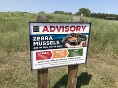 Zebra Mussels Advisory