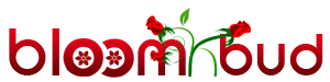 Bloomnbud.com
