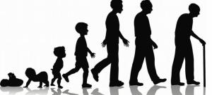 Image result for peringkat usia manusia