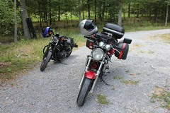Eve's Harley meets my SV650