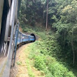 Sri Lanka Passenger Train Through Hill Country is More Than Scenic