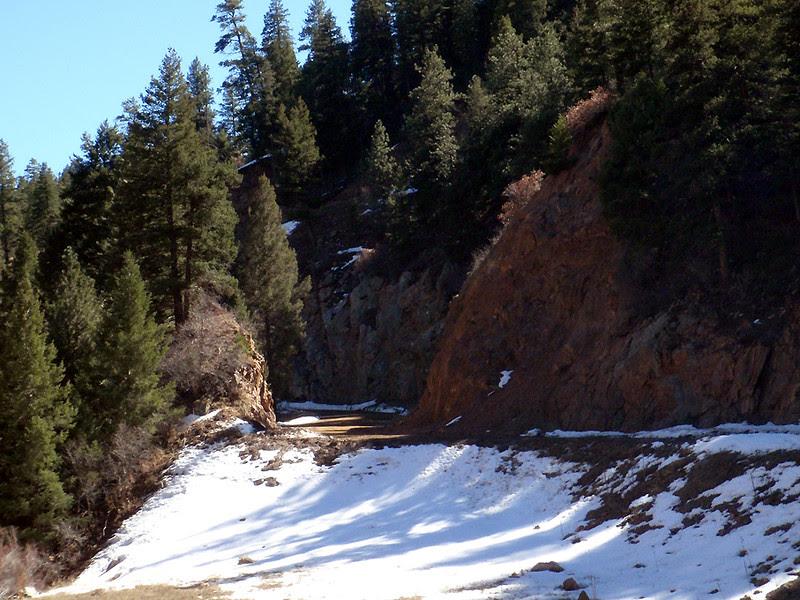 Denver Water service road, Colorado Trail access, upper Waterton Canyon