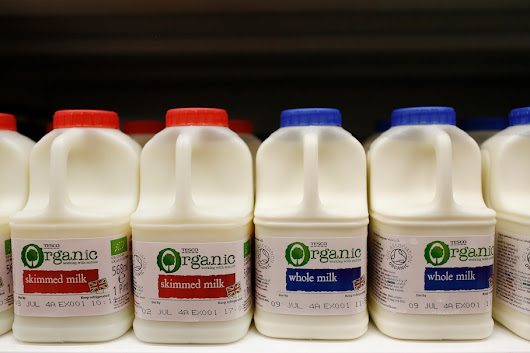 For decades, the government steered millions away from whole milk. Was that wrong?