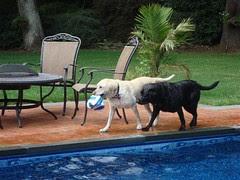 Zarah & Lucy