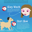 akcdoglovers.files.wordpress.com/2014/07/info2014_swimtips.png