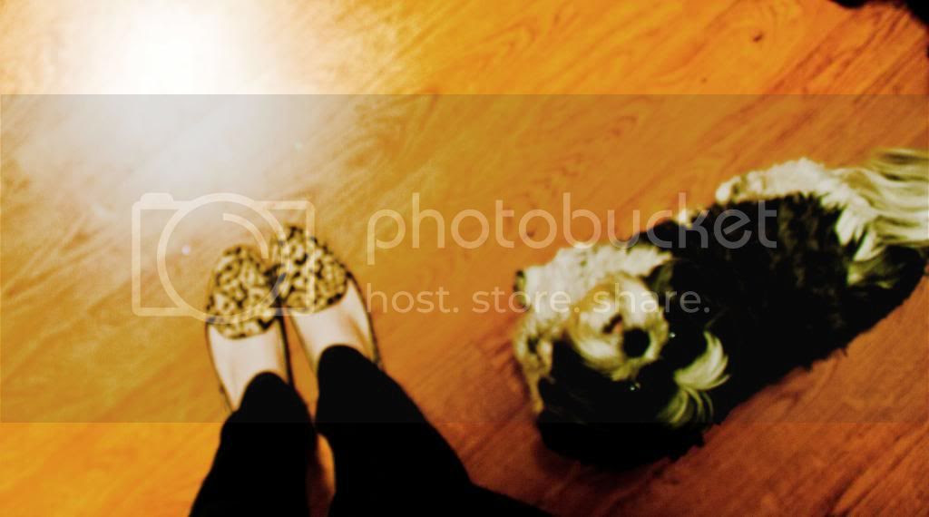 photo 031_zps3dd6421a.jpg