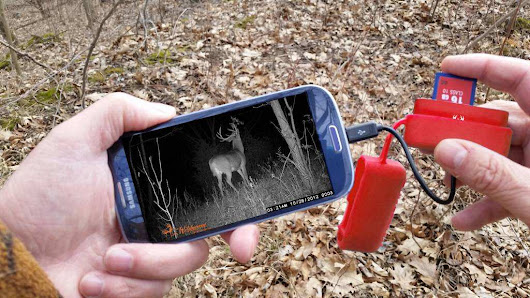 Top 5 Wireless Game Cameras for Hunting -