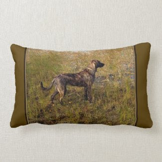Hunting Plott Hound Throw Pillow
