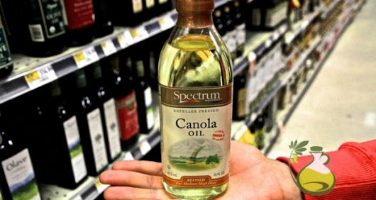 Is Canola Oil Bad for You? Canola Oil Dangers to Be Aware of