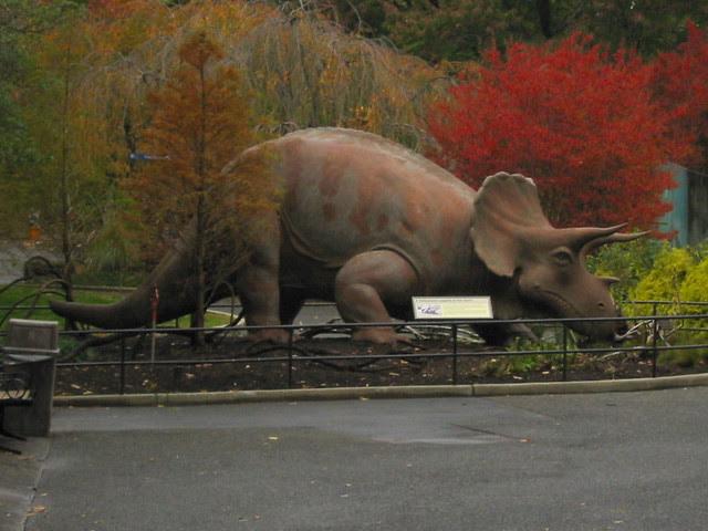 Triceratops Statue - National Zoo - Washington, DC