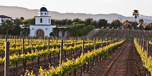 7 Vacation Spots Every Wine Lover Should Visit