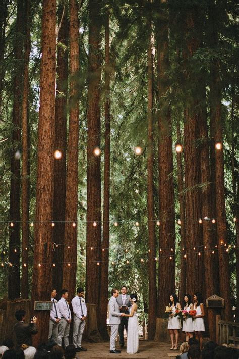 Unusual Wedding Venues   wedding planner   Woodland