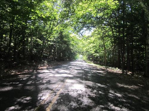 Sutter Road climb