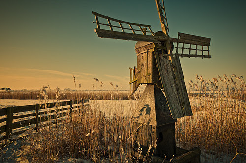 Warm Winter Light by Allard One