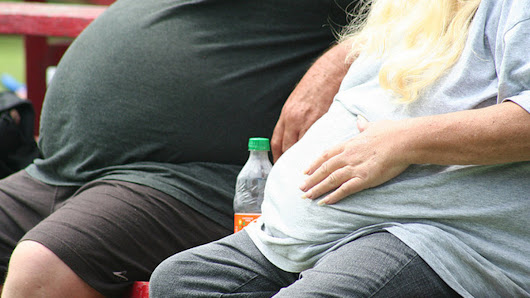 Nearly 30 percent of humans are overweight or obese