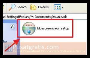 Download BlueScreenView