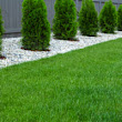 Top Lawn Treatment Services | Kemko Lawn Service