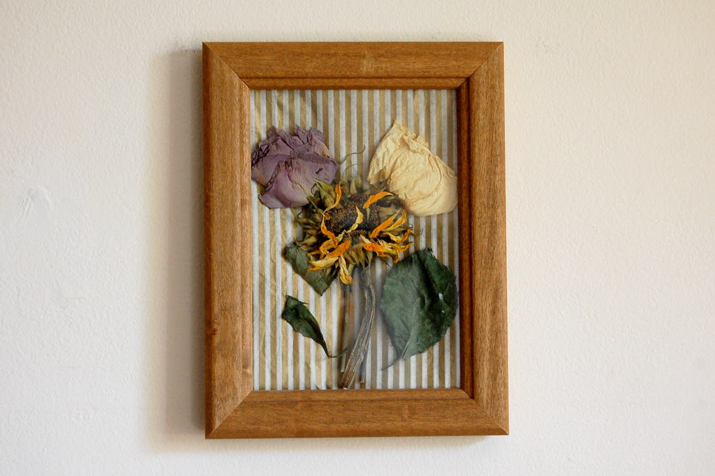 DIY • Pressed Flower Wall Art