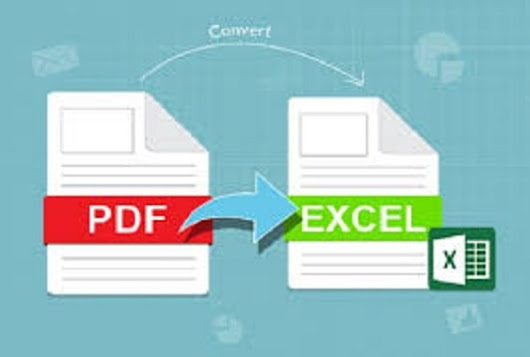 I will do big data entry from PDF to excel