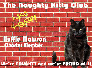 Huffle Mawson NKC Badge