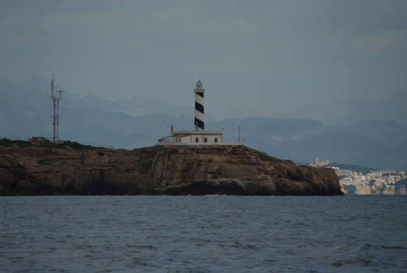 Wild Tigris - Palma lighthouse