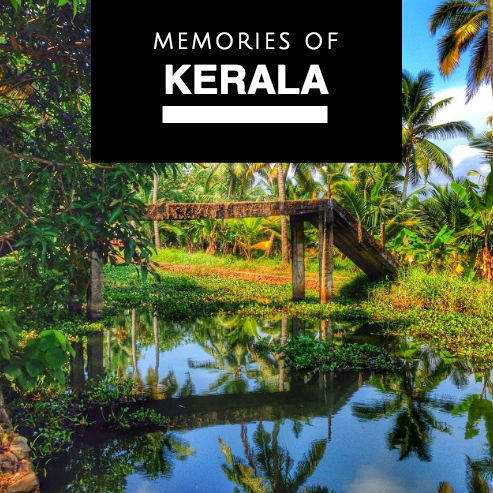 endless treasures of kerala in southern india on #igtravelthursday