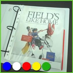 http://www.keepfiling.com/Color-Edge-Sheet-Protectors-p/13325lt.htm